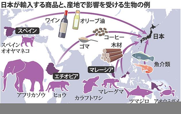 日本の輸入 生物多様性
